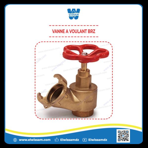 VANNE-A-VOULANT-BRZ.png