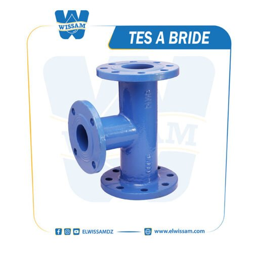 TES 3S BRIDE BLEU